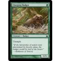 Charging Badger