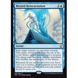 Blessed Reincarnation
