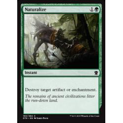 Naturalisieren
