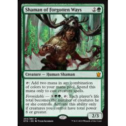 Shaman of Forgotten Ways