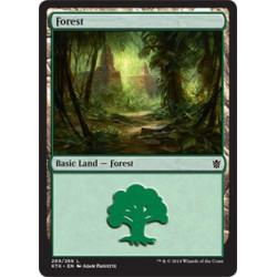 Wald (269)