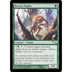 Orphe brun