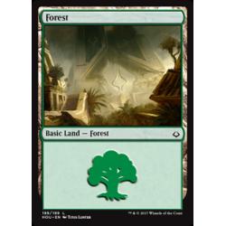 Forest (Version 2)