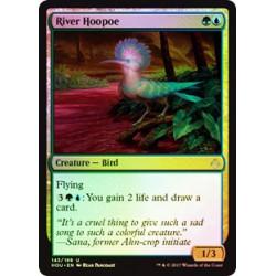 River Hoopoe - Foil