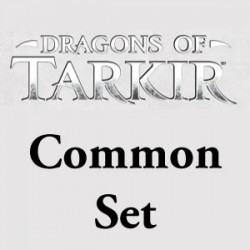 Dragons of Tarkir: Common Set