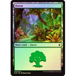 Forest (Version 3) - Foil