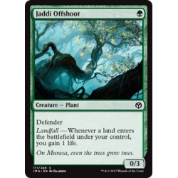 Jaddi Offshoot
