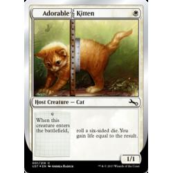 Adorable Kitten - Foil