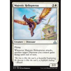 Majestätischer Heliopterus