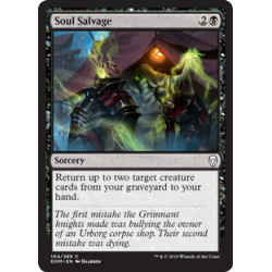 Soul Salvage