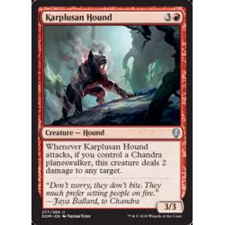 Karplusan Hound