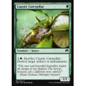 Caustic Caterpillar