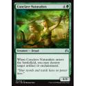 Conclave Naturalists