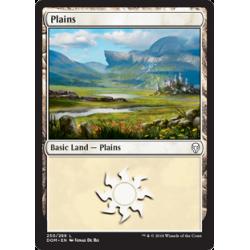 Plains (Version 1) - Foil