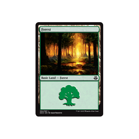 Forest (64)