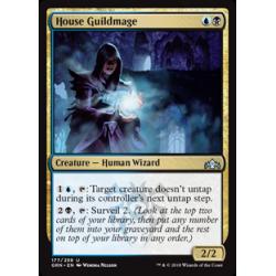 House Guildmage
