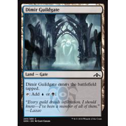 Dimir Guildgate (Version 1) - Foil