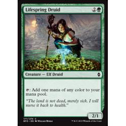 Lifespring Druid