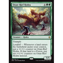 Hydre d'Oran-Rief
