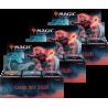 Set Base 2020 - 3x Confezione di buste