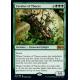Cavalier of Thorns - Foil