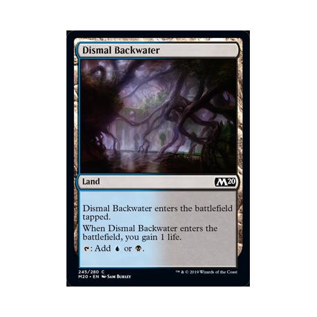 Dismal Backwater - Foil