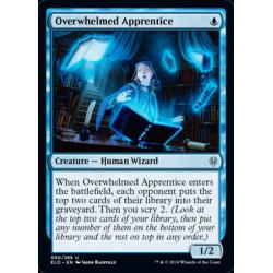 Overwhelmed Apprentice
