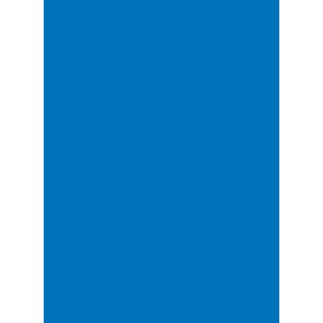 Legion - Double Matte 50 Sleeves - Blue