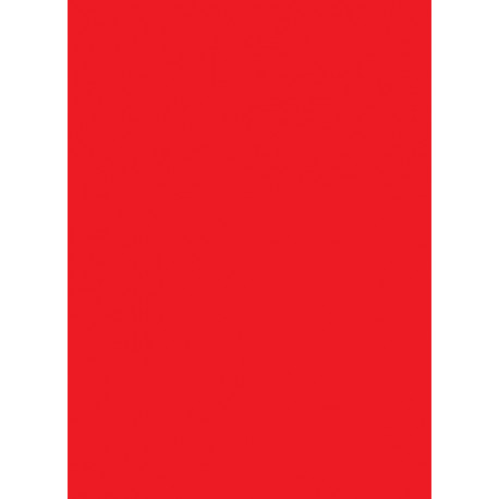 Legion - Double Matte 50 Sleeves - Red