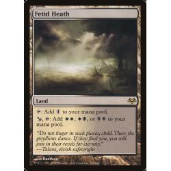 Fetid Heath