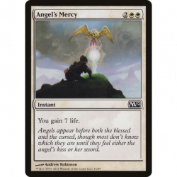 Angel's Mercy