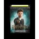 Dragon Shield - WizardingWorld Art 100 Sleeves - Harry Potter