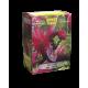 Dragon Shield - Art 100 Sleeves - Sahar