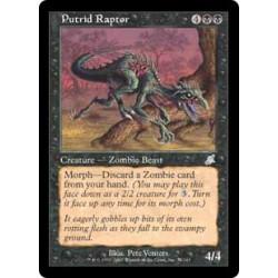 Raptor putride