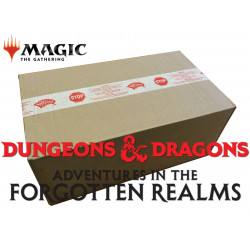Adventures in the Forgotten Realms - 6x Draft Booster Box (Case)