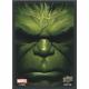 Upper Deck - Marvel Card Sleeves (65x) - Hulk
