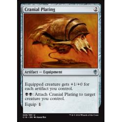 Cranial Plating