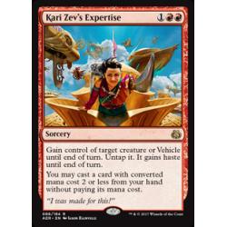 Expertise de Kari Zev