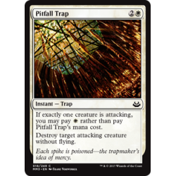 Pitfall Trap