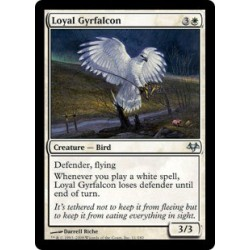 Loyal Gyrfalcon